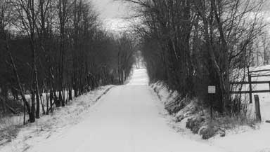 Mine Road During Winter 2004